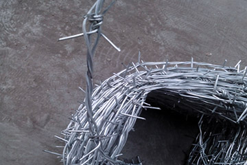 Barbed wire stinging